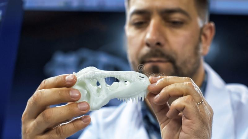 Man exploring dinosaur miniature 3-D skull. Scientific researcher holding and watching miniature of three-dimensional printed dinosaur skull in laboratory stock images