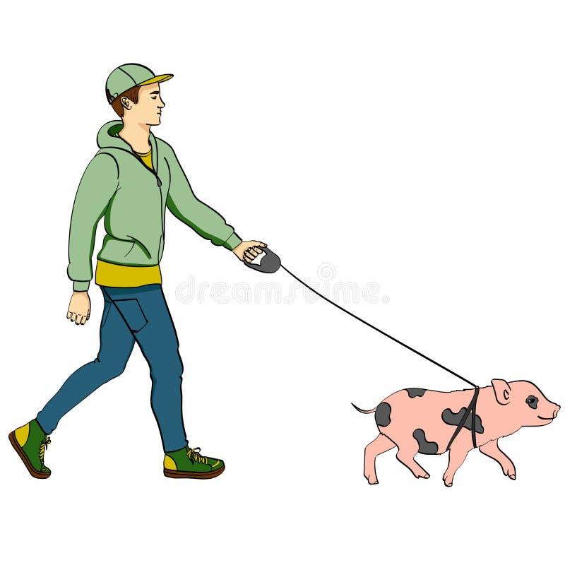 Man för popkonst som går ett mini- svin E för objektbana för bakgrund clipping isolerad white royaltyfri illustrationer