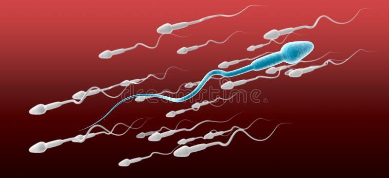 Man för spermacell mot flödet royaltyfri illustrationer