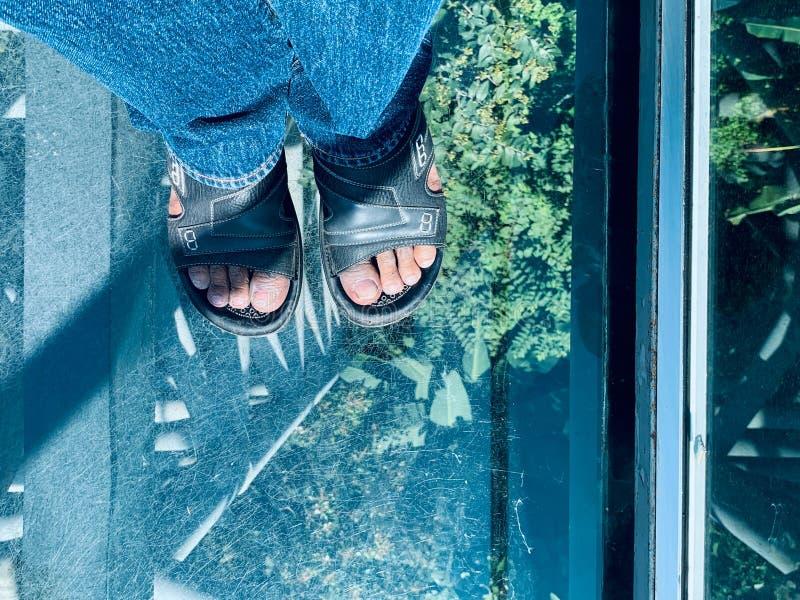 Man Feet på Canopy Walkway royaltyfri foto