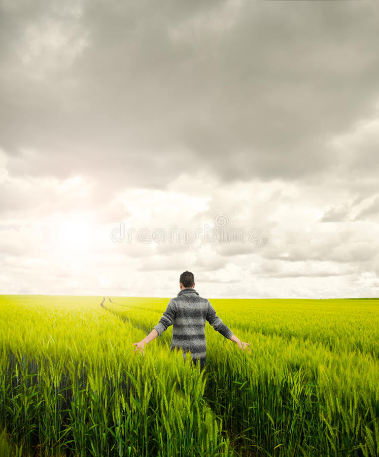 Download Man on a field stock image. Image of beauty, freedom - 26750483
