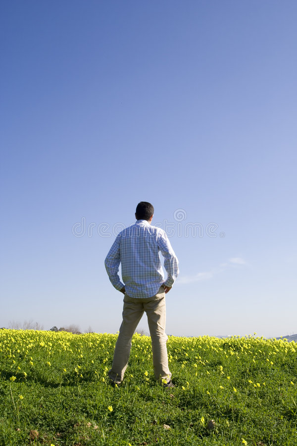 Download Man In The Field Stock Photo - Image: 4367550