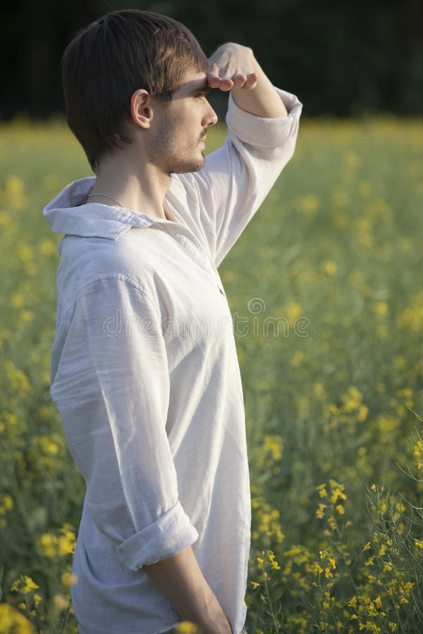 Man In Field Looking Royalty Free Stock Image