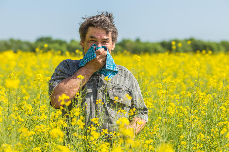 Man in the field suffers from allergies royalty free stock images