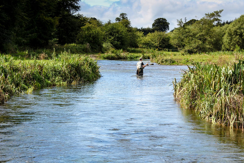 Man fly fishing casts on Irish river royalty free stock images