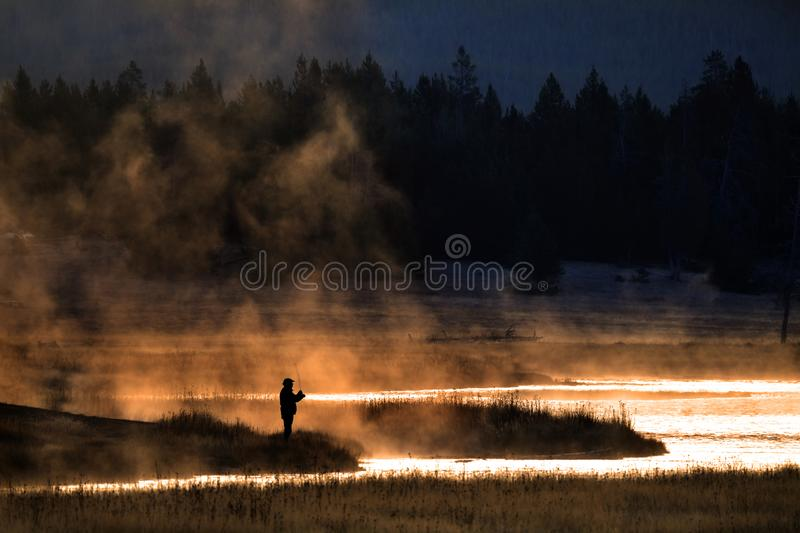 Man Flyfishing in Early Morning Light Mist from River Golden Sun. Man flyfishing in early morning light on a misty river with golden sunlight royalty free stock image