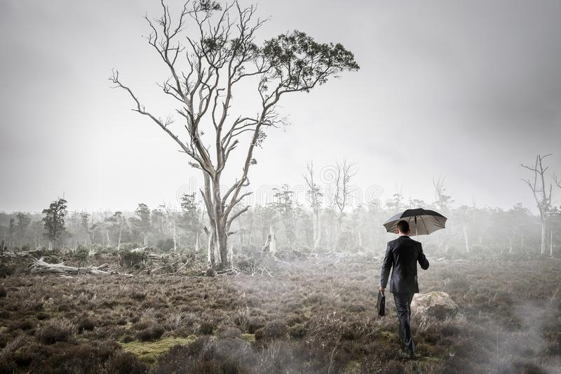 Man in foggy forest. Mixed media royalty free stock images