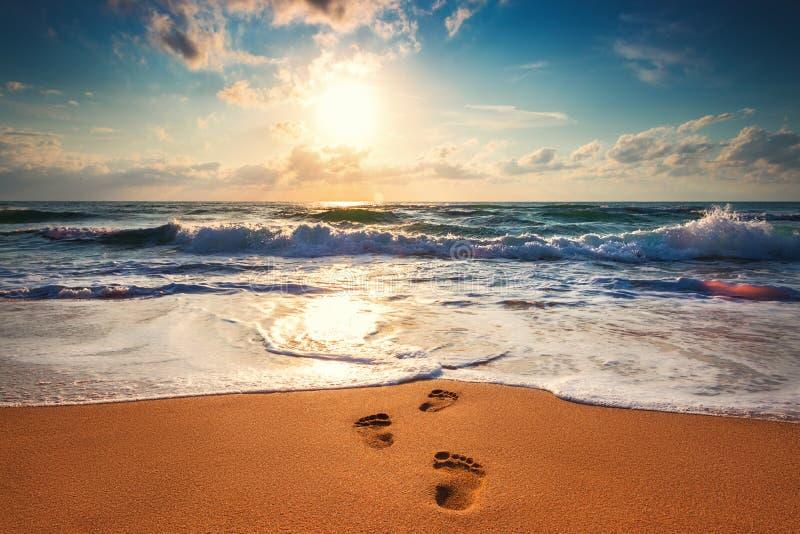 Man footsteps on the beach going toward the sea, orange sunrise shot.  stock photo
