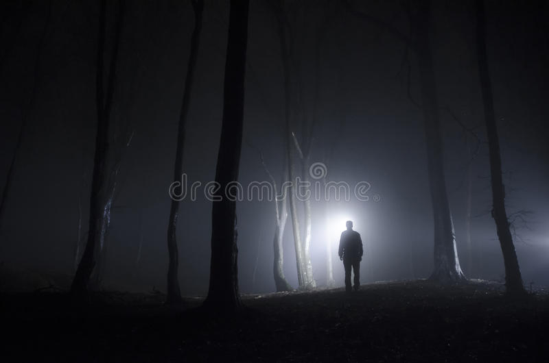 Man in forest at night with fog royalty free stock photography