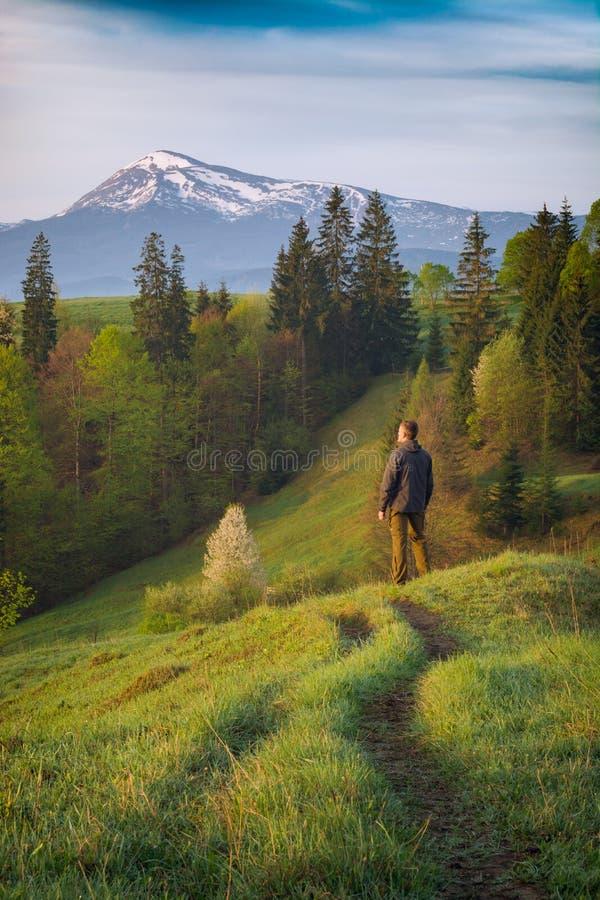 Man fotvandrareanseendet på en väg i en bergdal royaltyfri foto