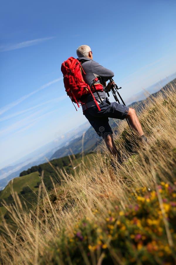 Man fotvandraren i bergen på en härlig sommardag royaltyfria foton
