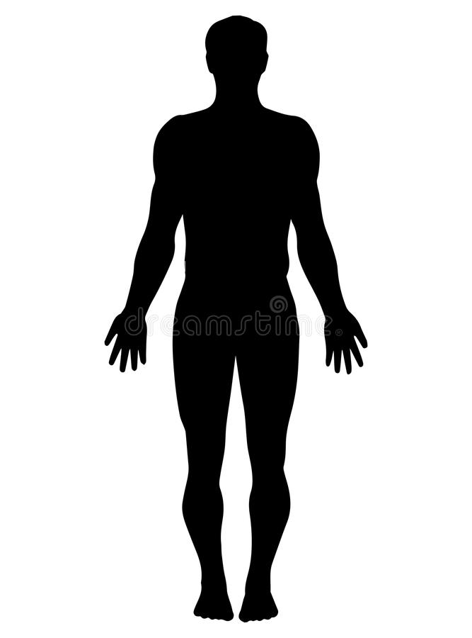 man silhouette stock vector illustration of front body 113369171 rh dreamstime com male model silhouette vector male silhouette vector free