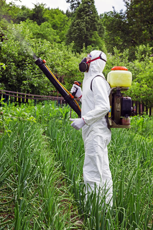 Man in full protective clothing spraying chemicals. In the garden/orchard royalty free stock photo