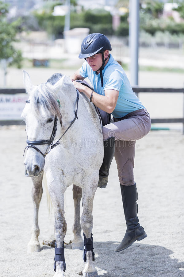 Man gets on the horseback. Young horse rider gets on the white horseback at the byre - focus on the rider body royalty free stock photo