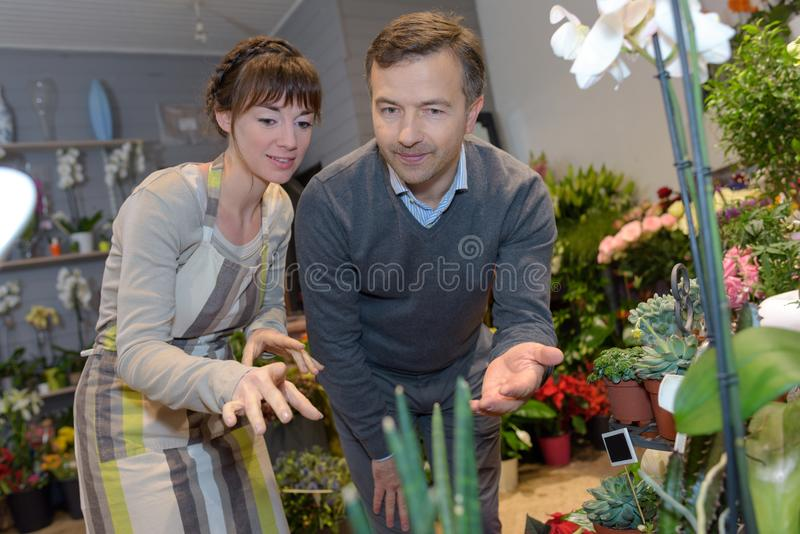 Man getting consultation in nursery shop from gardener stock images