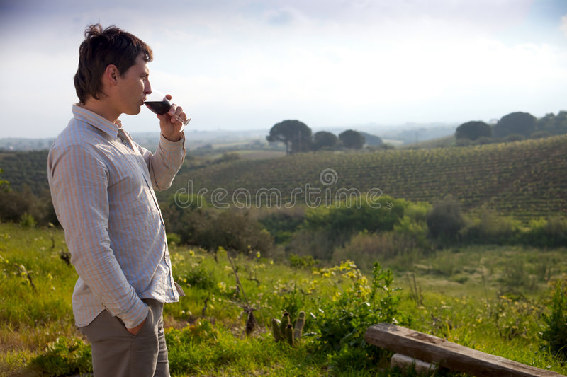 Man with glass of wine. Man enjoying wine and looking beautiful view of vineyard stock image