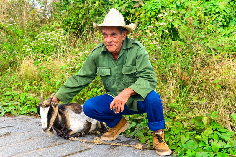 Man and goat stock photo