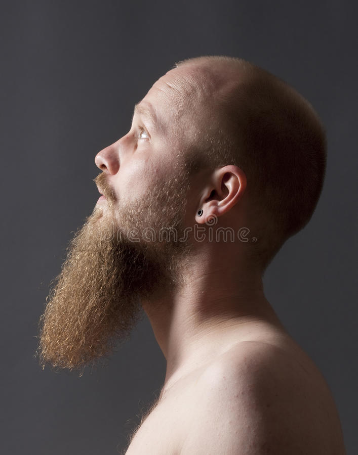 Download Man with Goatee Beard stock image. Image of attitude - 31897015