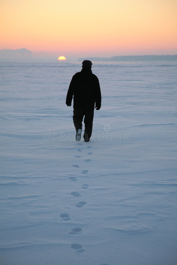 Free Man Goes Through Snowy Field 2 Royalty Free Stock Photo - 4485225