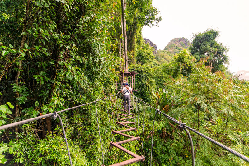 man going on zipline adventure through the forest in Lao stock photo