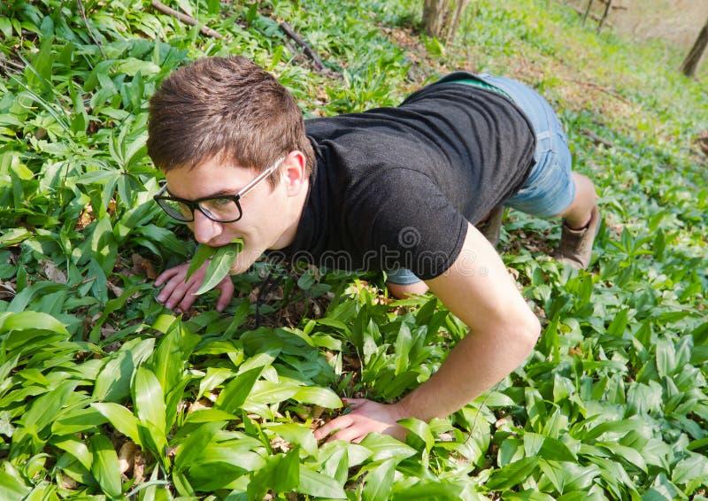 Download Man Grazing Stock Photos - Image: 24109323