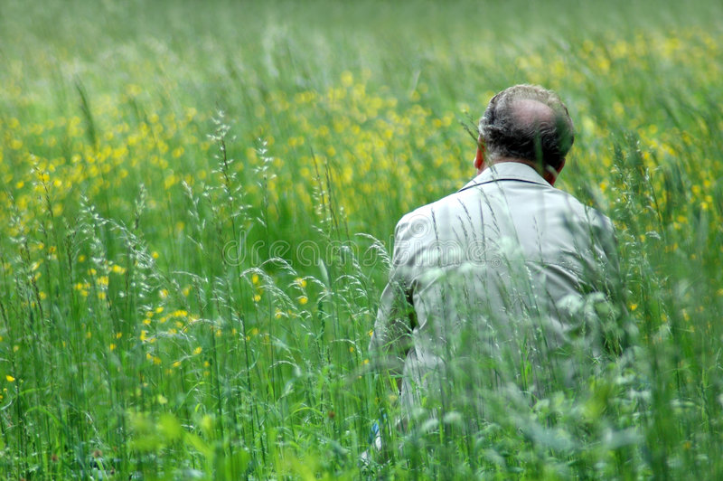 Download Man on green field stock photo. Image of flat, fields, open - 123822