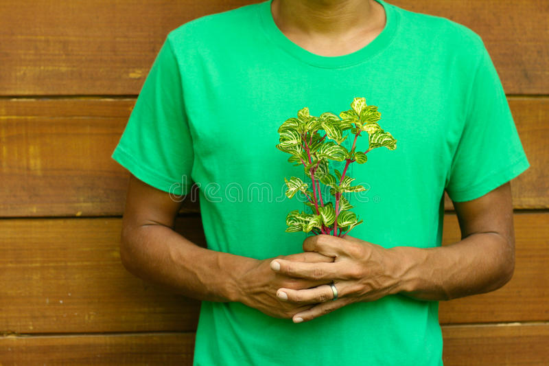 Download Man In Green Shirt Holding Flowers Stock Image - Image: 12135545