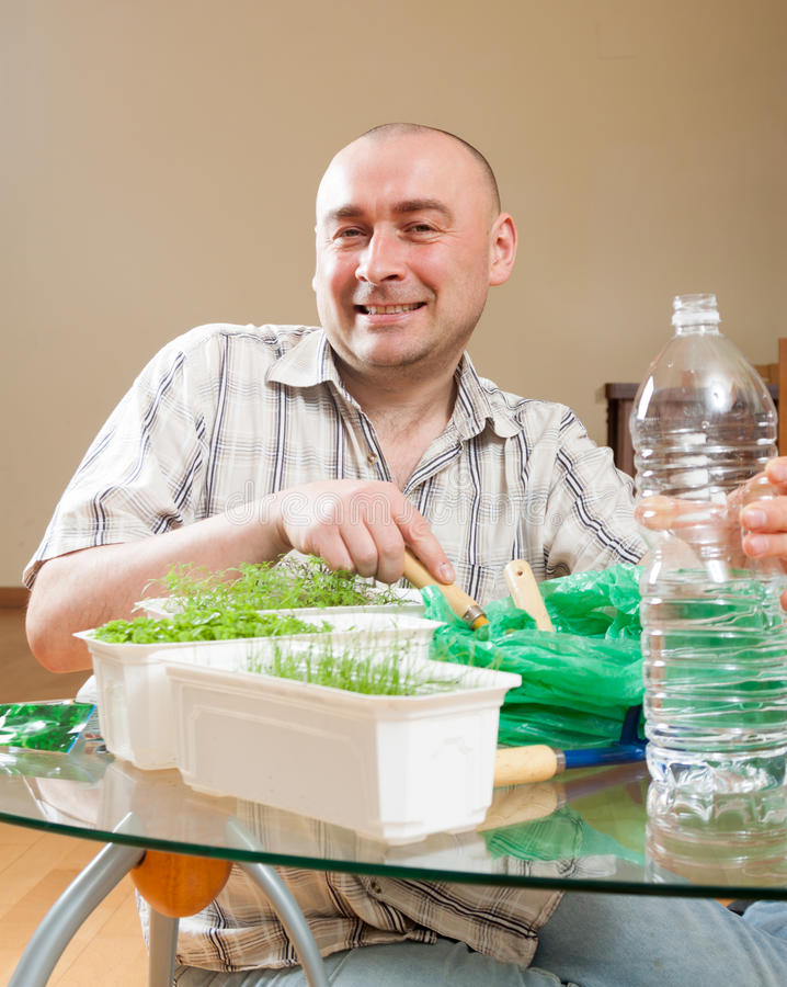 Man growing parsley and dill stock photos