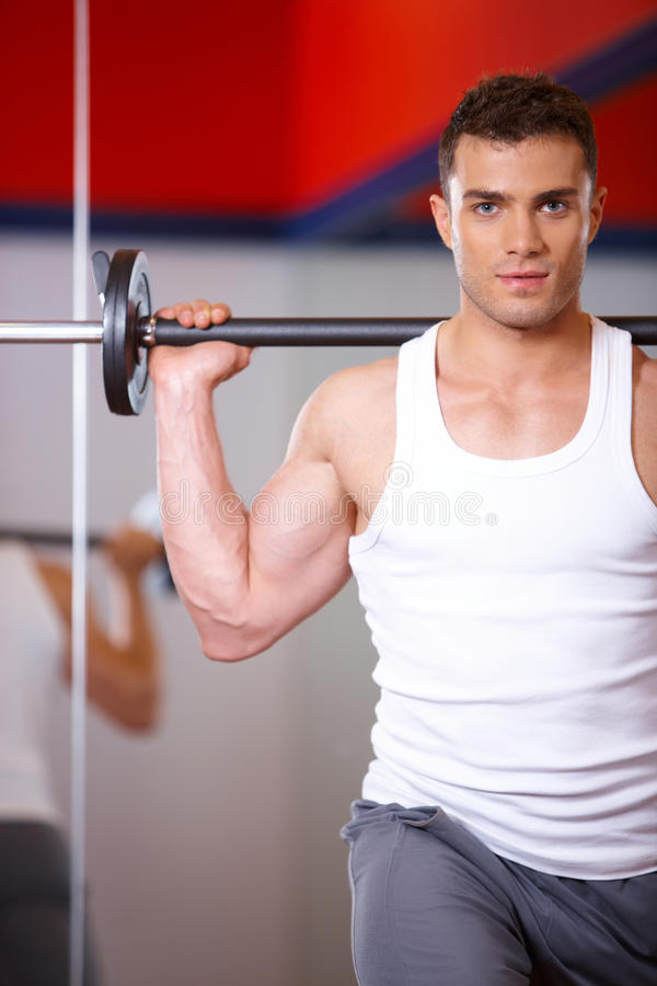 Download Man at the gym stock photo. Image of train, male, exercise - 14855054