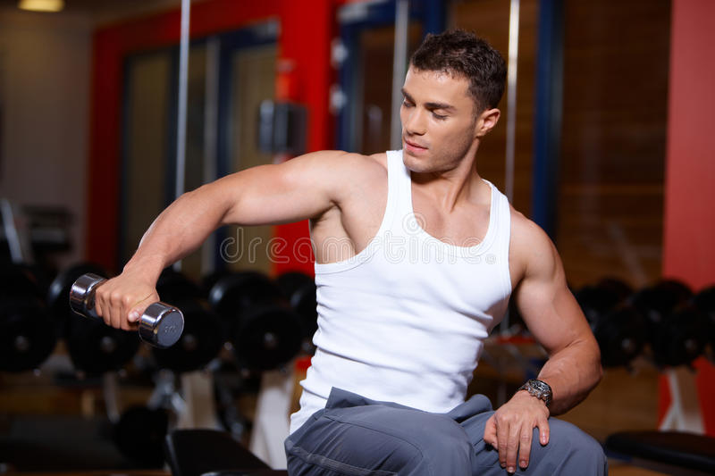 Download Man at the gym stock photo. Image of lifting, health - 14855284