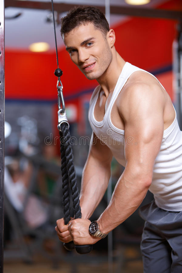 Download Man at the gym stock photo. Image of adult, train, bodybuilding - 14855368