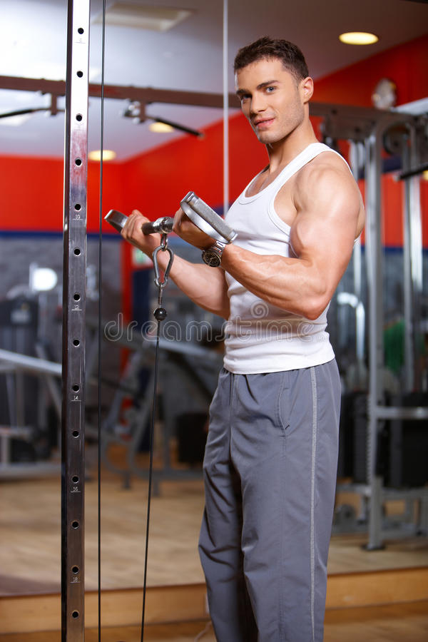 Download Man at the gym stock image. Image of handsome, strong - 14855381