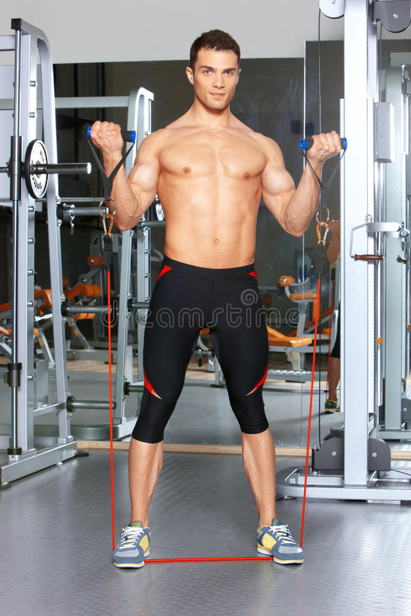 Download Man at the gym stock image. Image of exercise, strength - 19183053