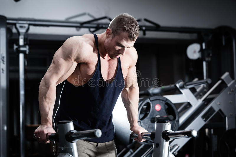 Man in gym at dip exercise stock photos