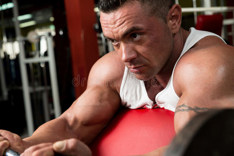 Download Man In The Gym Exercising Biceps With Barbell Stock Photo - Image: 33975542