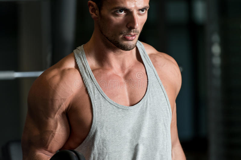 Download Man In The Gym Exercising Biceps With Dumbbells Stock Image - Image: 35467111