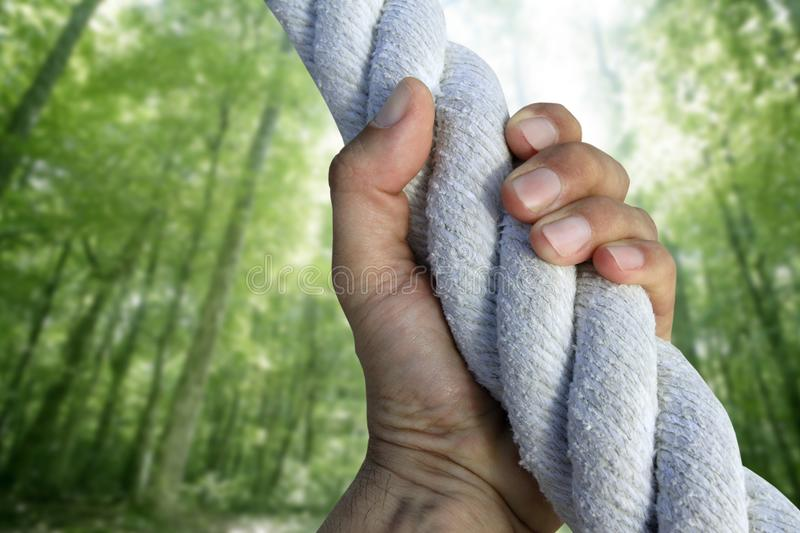 Man hand grab grip climbing green forest rope stock photography