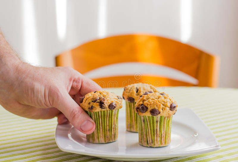 Man hand taking chocolate chip muffin at breakfast royalty free stock photography