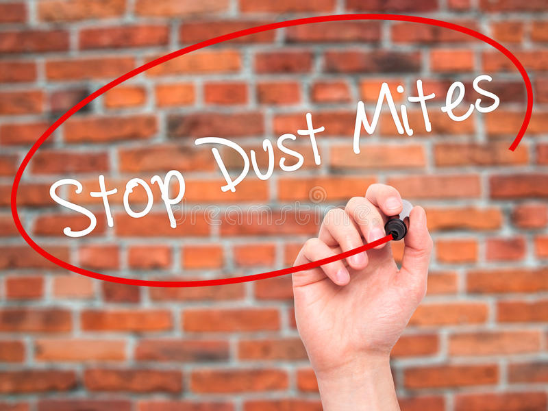 Man Hand writing Stop Dust Mites with black marker on visual sc stock photos