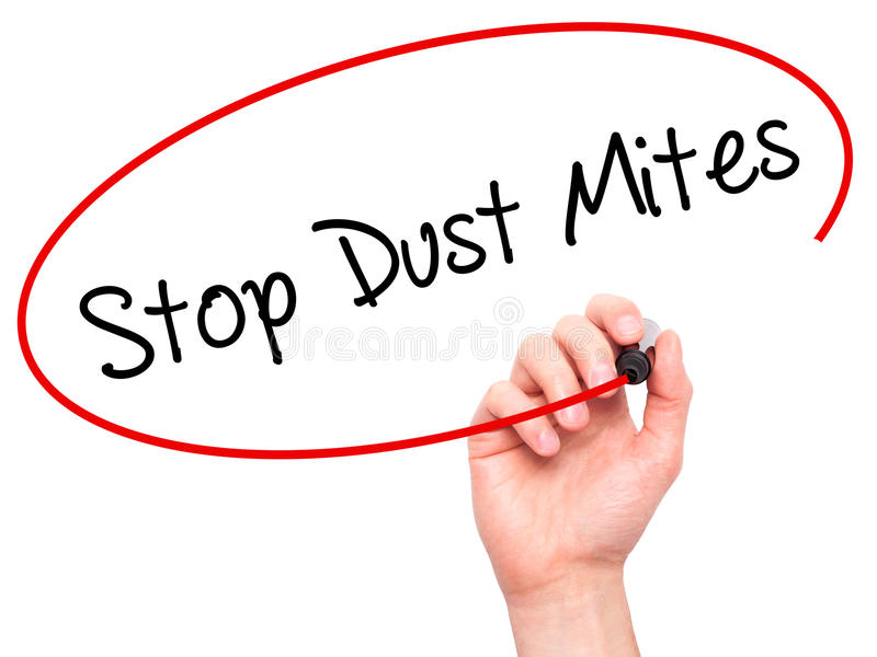 Man Hand writing Stop Dust Mites with black marker on visual sc stock image