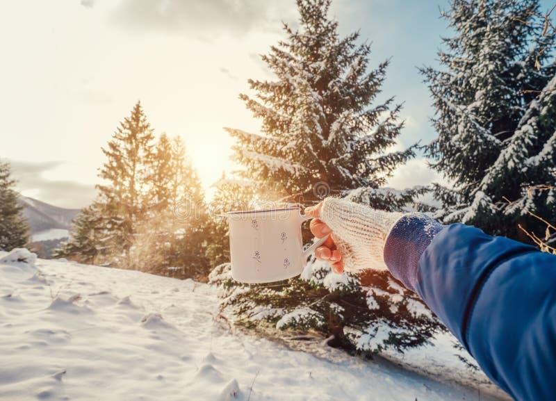 Man handen i handarbetetumvante med koppen av varmt te med snöskogen royaltyfri foto