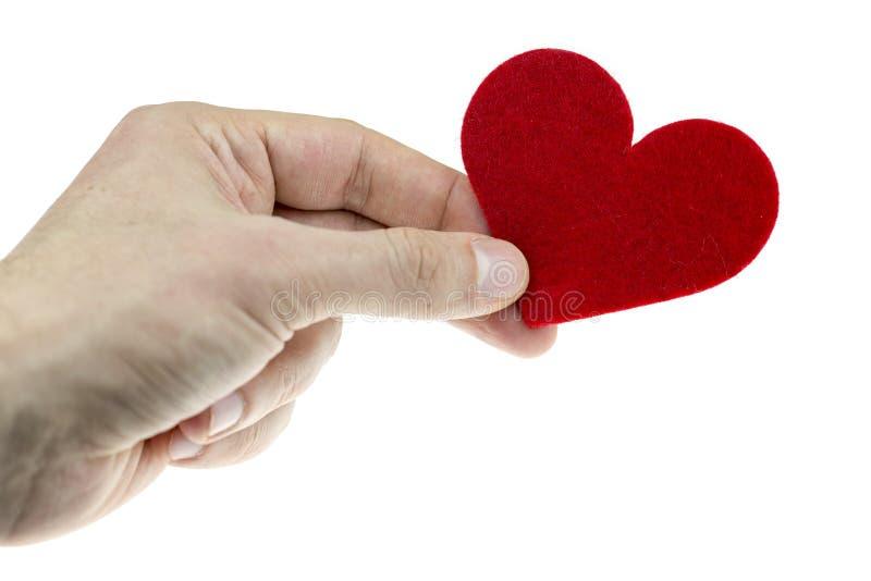 Man handen som rymmer röd textilhjärta i hans hand Var min valentin, valentindagbegrepp arkivbilder