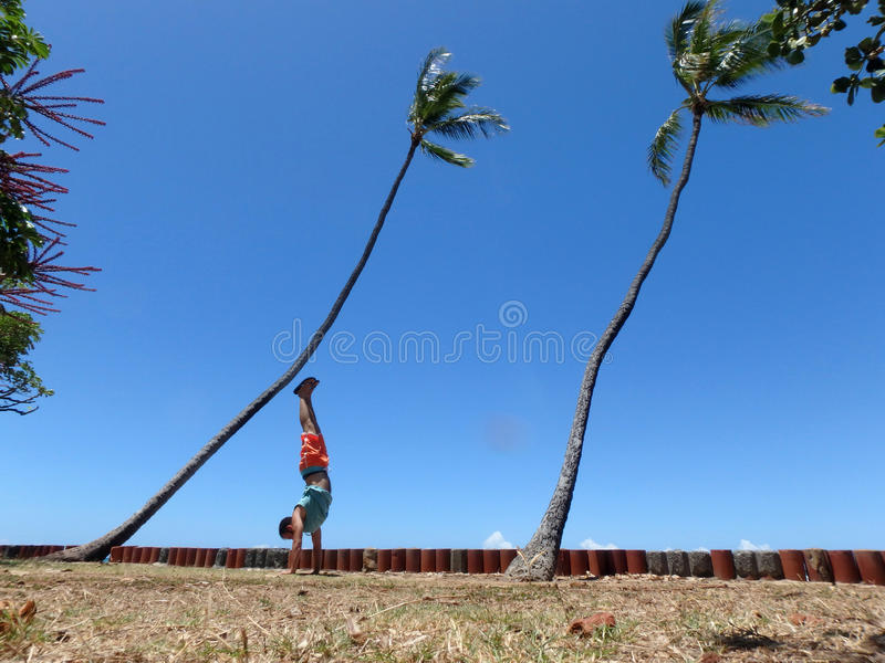 Man Handstanding in the grass along cliff shore next to shallow. Ocean waters of Waikiki with Coconut trees hang over looking into the pacific ocean at Leahi royalty free stock image