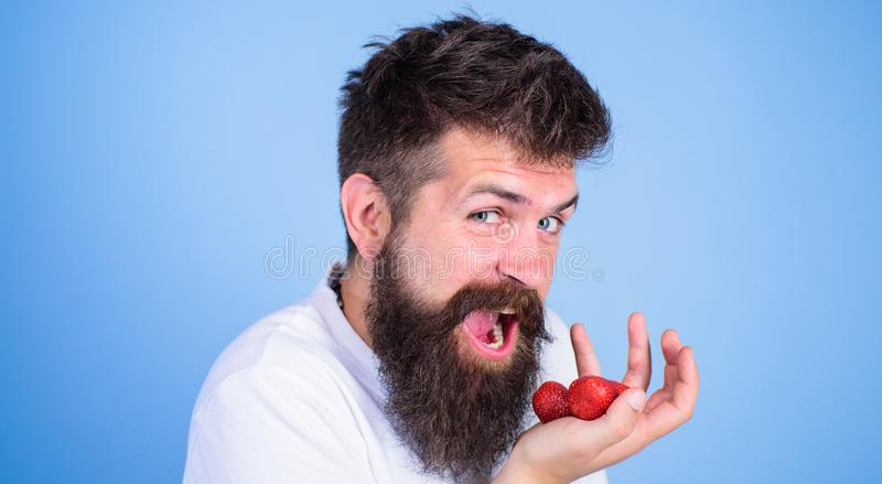 Man happy face open mouth with beard eats strawberries. Want to try my berry Hipster bearded holds strawberries on palm. Close up. Man cheerful gonna eat ripe stock image