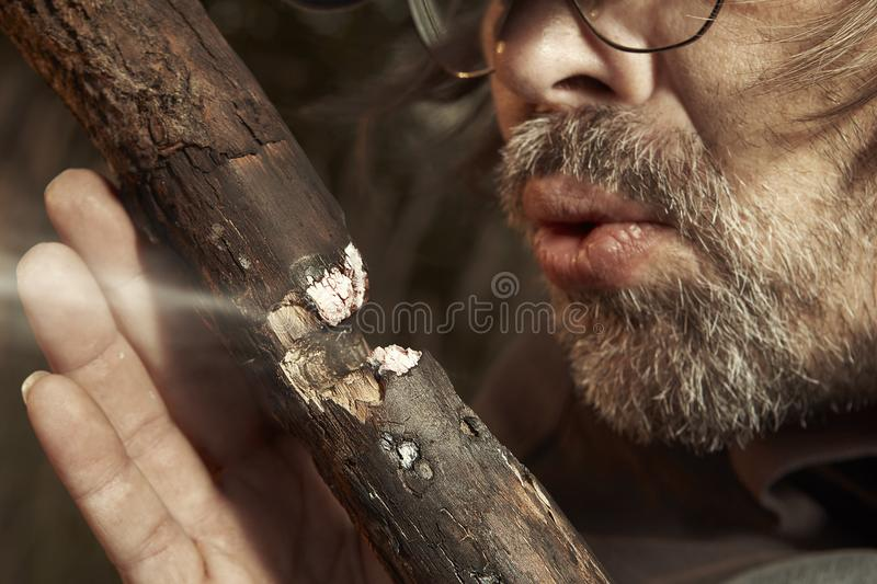 Man camping in nature making fire with wood stick friction by hands. Man in hat trying to make a fire with wood stick friction stock photos