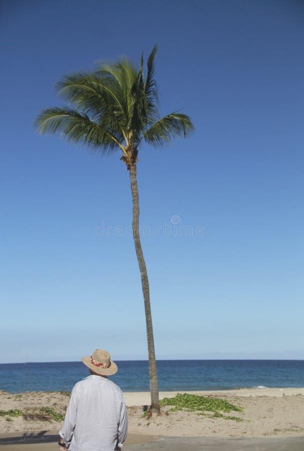 Man on Hawaiin beach royalty free stock photos
