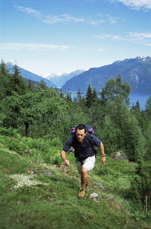 Man hiking in the great outdoors royalty free stock photos