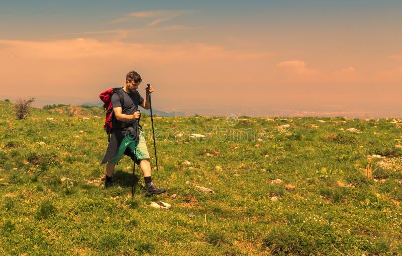 Man Hiking in Green Mountains stock photo