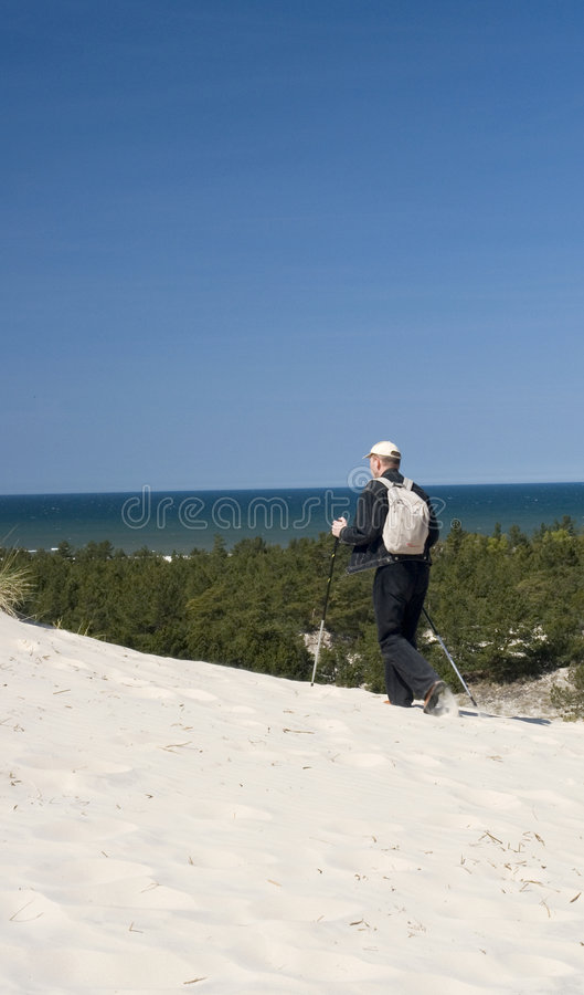 Download Man Hiking near Ocean stock photo. Image of sunshine, tropical - 2382842