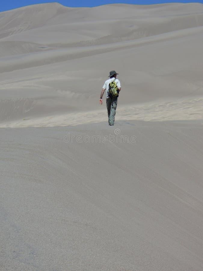 Download Man hiking in sand dunes stock image. Image of thirst - 7775549